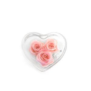 Il cuore di vetro con rose stabilizzate rosa Parodia