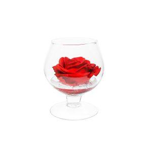 Coppa cognac in vetro con rosa stabilizzata rossa Parodia