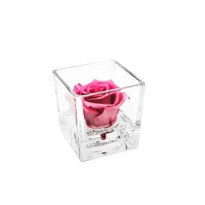 Cubo in vetro con rosa stabilizzata rosa profumata Parodia