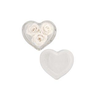 Il cuore di vetro con rose stabilizzate bianche Parodia