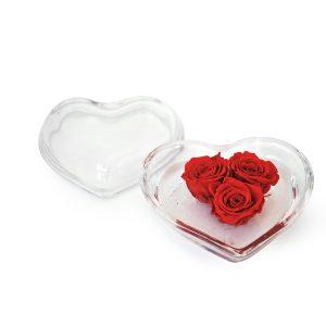 Cuore con rose stabilizzate rosse Parodia