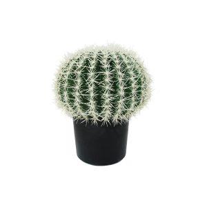 Le palle di cactus, pianta artificiale di Parodia