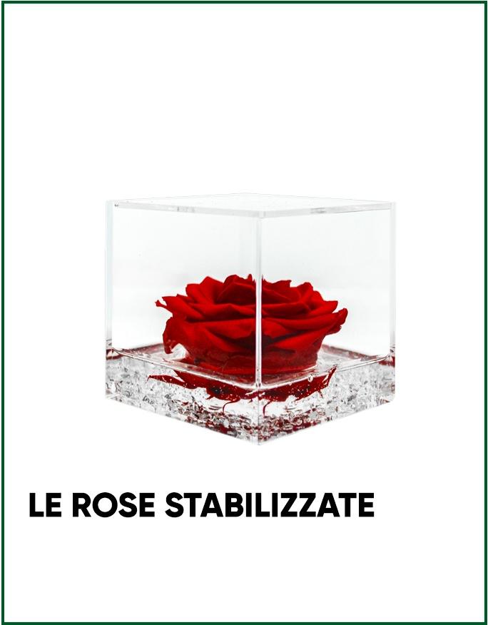 Le Rose Stabilizzate di Parodia