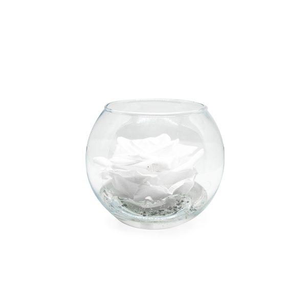 Sfera in vetro con rosa stabilizzata bianca profumata Parodia