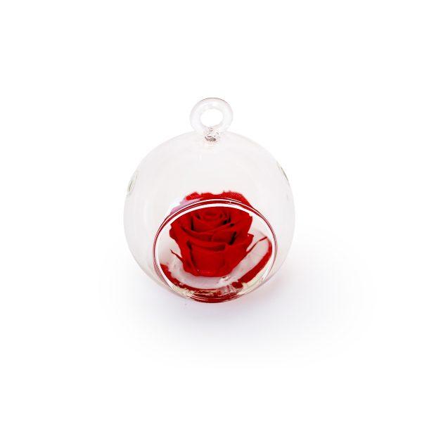 Sfera in vetro tagliata con gancio con rosa stabilizzata rossa Parodia