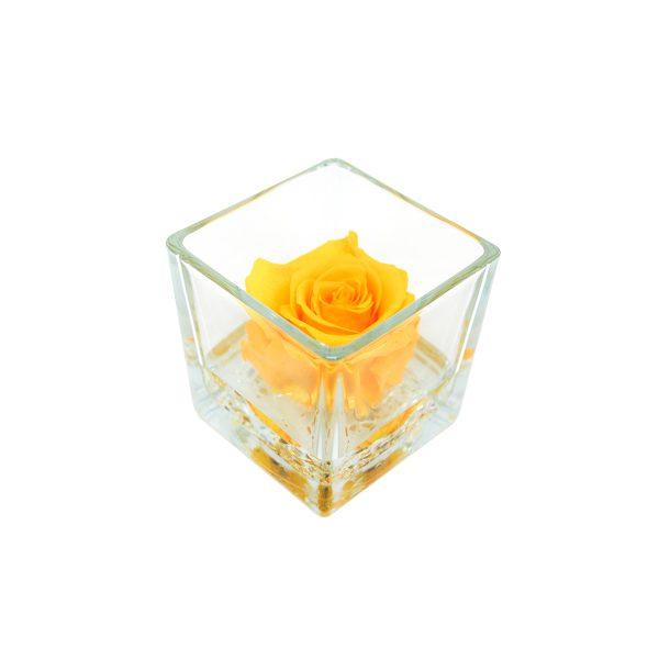 Cubo in vetro con rosa stabilizzata profumata gialla Parodia