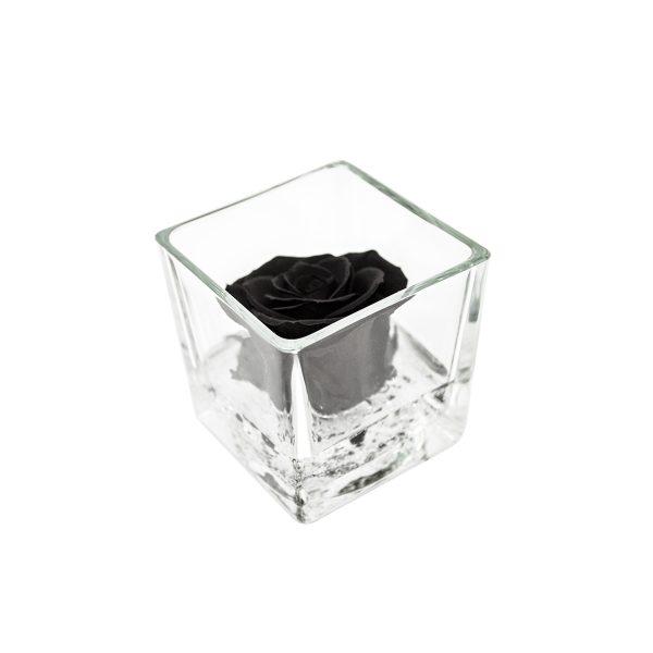 Cubo in vetro con rosa stabilizzata profumata nera Parodia