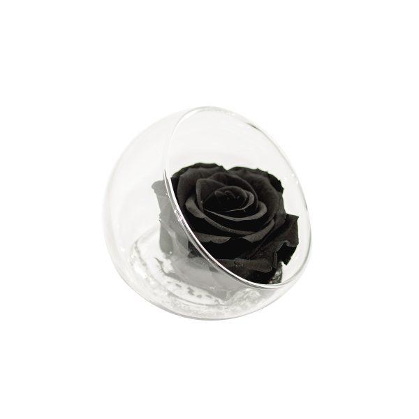 Sfera tagliata con rosa stabilizzata nera Parodia