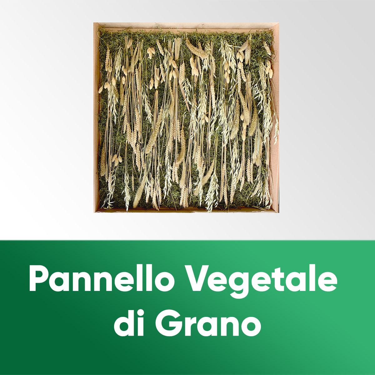 PANNELLO VEGETALE DI GRANO