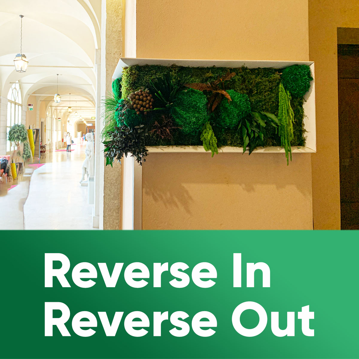 REVERSE IN - REVERSE OUT